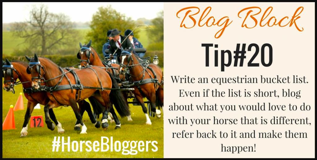 31 Equestrian Blogging Ideas To Keep You Writing   Haynet on